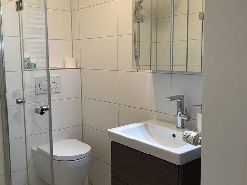 Projekt Gäste WC mit Dusche